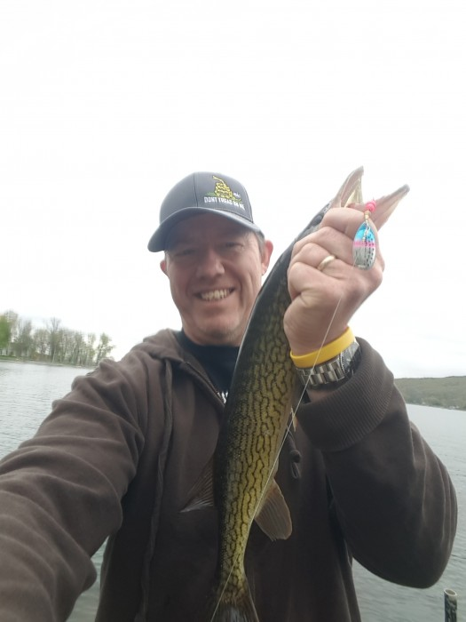 Photo of Pickerel Caught by James with Mepps Aglia & Dressed Aglia in New York