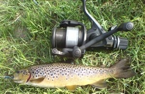 Photo of Trout Caught by Conor  with Mepps Thunder Bug in United Kingdom