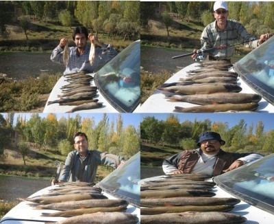 Photo of Trout Caught by Mehrzad with Mepps Aglia & Dressed Aglia in Iran