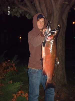 Photo of Jason's 10/12/09 Salmon, Coho (silver)