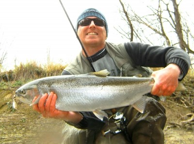 Photo of Steelhead Caught by Ted with Mepps Aglia & Dressed Aglia in Indiana
