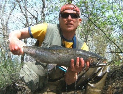 Photo of Ted's 4/14/10 Steelhead