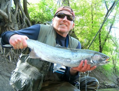 Photo of Ted's 4/27/10 Steelhead