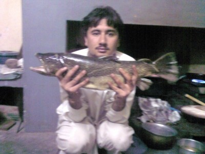 Photo of Trout Caught by Ihtisham with Mepps Aglia & Dressed Aglia in Pakistan