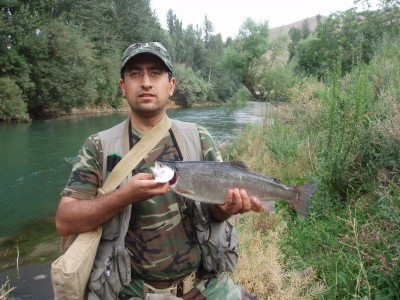 Photo of Omid's 9/23/10 Trout, Rainbow