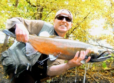 Photo of Ted's 10/13/10 Salmon, Coho (silver)