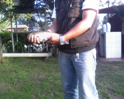 Photo of Trout Caught by Edwin with Mepps  in Colombia