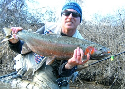 Photo of Ted's 3/6/11 Steelhead