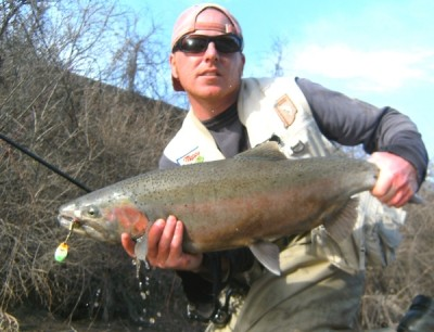 Photo of Ted's 3/19/11 Steelhead