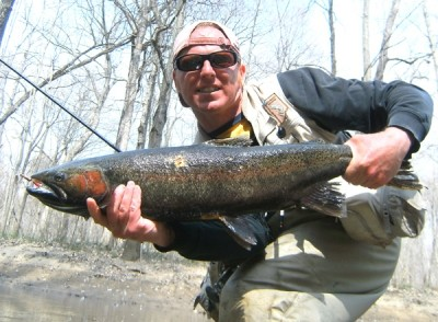 Photo of Steelhead Caught by Ted with Mepps Aglia & Dressed Aglia in Michigan