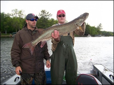 Photo of Musky Caught by Todd  with Mepps Musky Killer in Minnesota