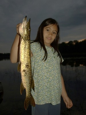 Photo of Haley's 7/5/11 Pike, Northern