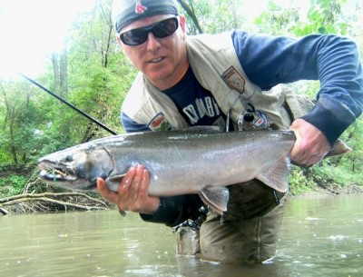 Photo of Ted's 9/19/11 Salmon, Coho (silver)