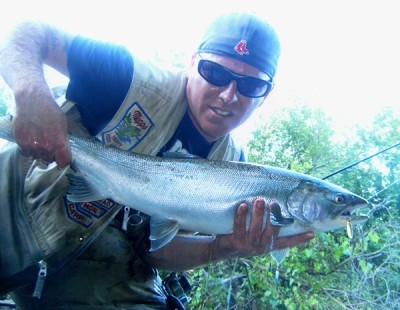 Photo of Salmon Caught by Ted with Mister Twister Aglia & Dressed Aglia in Indiana - Mister Twister
