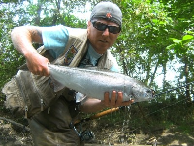 Photo of Ted's 9/23/11 Salmon, Coho (silver)