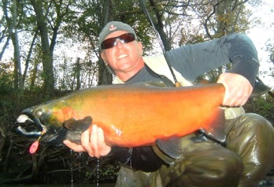 Photo of Ted's 10/23/11 Salmon, Coho (silver)