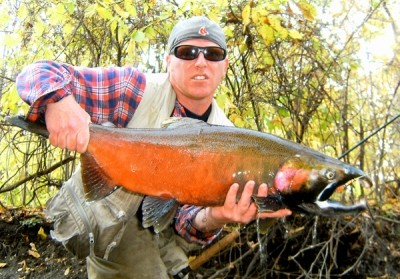 Photo of Ted's 10/25/11 Salmon, Coho (silver)