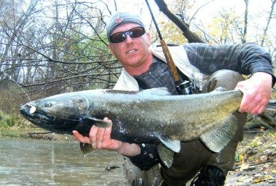 Photo of Ted's 11/7/11 Salmon, Chinook (king)