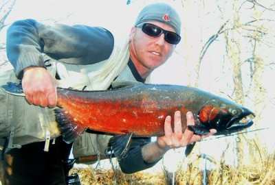 Photo of Ted's 11/30/11 Salmon, Coho (silver)