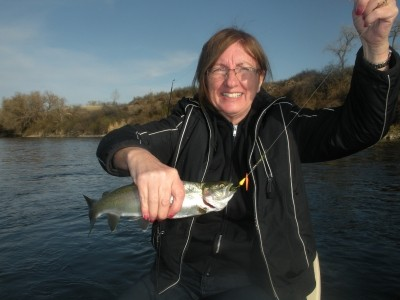 Photo of Trout Caught by Sheila with Mepps LongCast in Montana