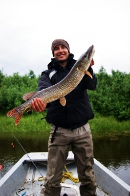Photo of Pike Caught by Justin with Mepps Flying C in Alaska