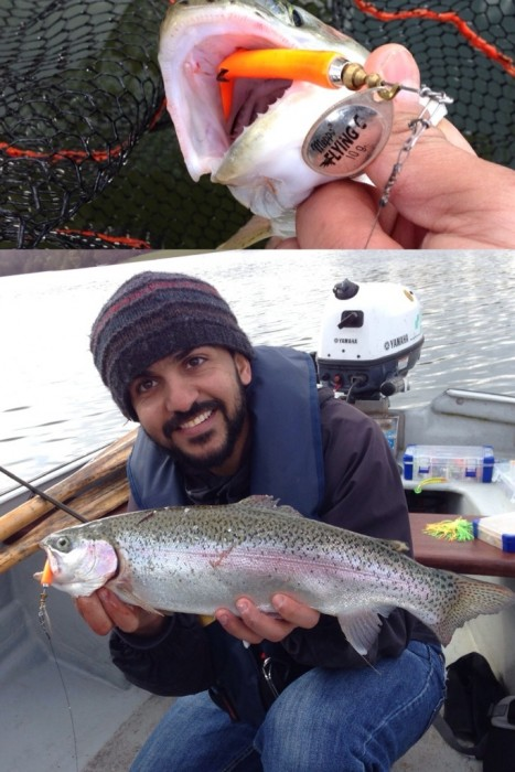 Photo of Trout Caught by Mukhled with Mepps Flying C in United Kingdom