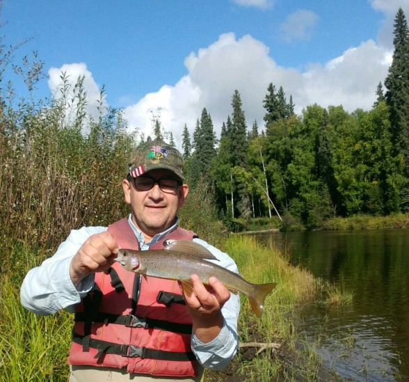 Photo of Grayling Caught by Mark W with Mepps Syclops in Alaska