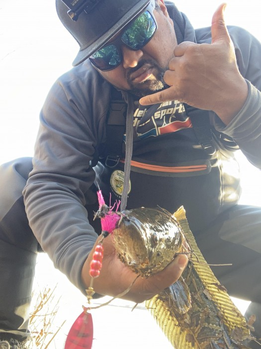 Photo of Snakehead Caught by Rashan with Mepps Aglia & Dressed Aglia in Maryland