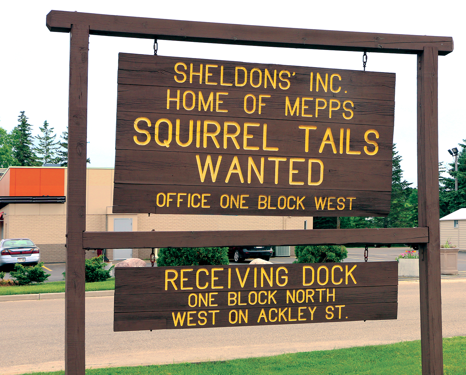 squirrel-tail-sign