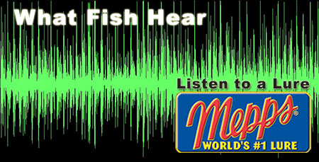 discover what fishing lures sound like underwater mepps
