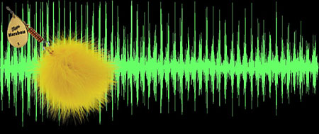 Waveforms of the sounds produced by the Mepps Marabou