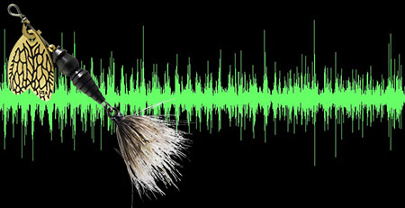 Waveforms of the sounds produced by the Thunder Bug #2